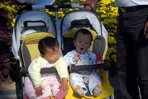 Fraternal-twins-2961286846172Cu5i